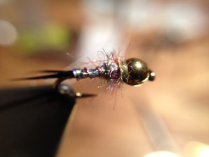 Biot Rainbow Nymph