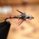 Soft Hackle Pheasant Tail - click for recip