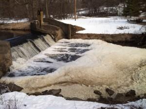 Bucksnort Dam