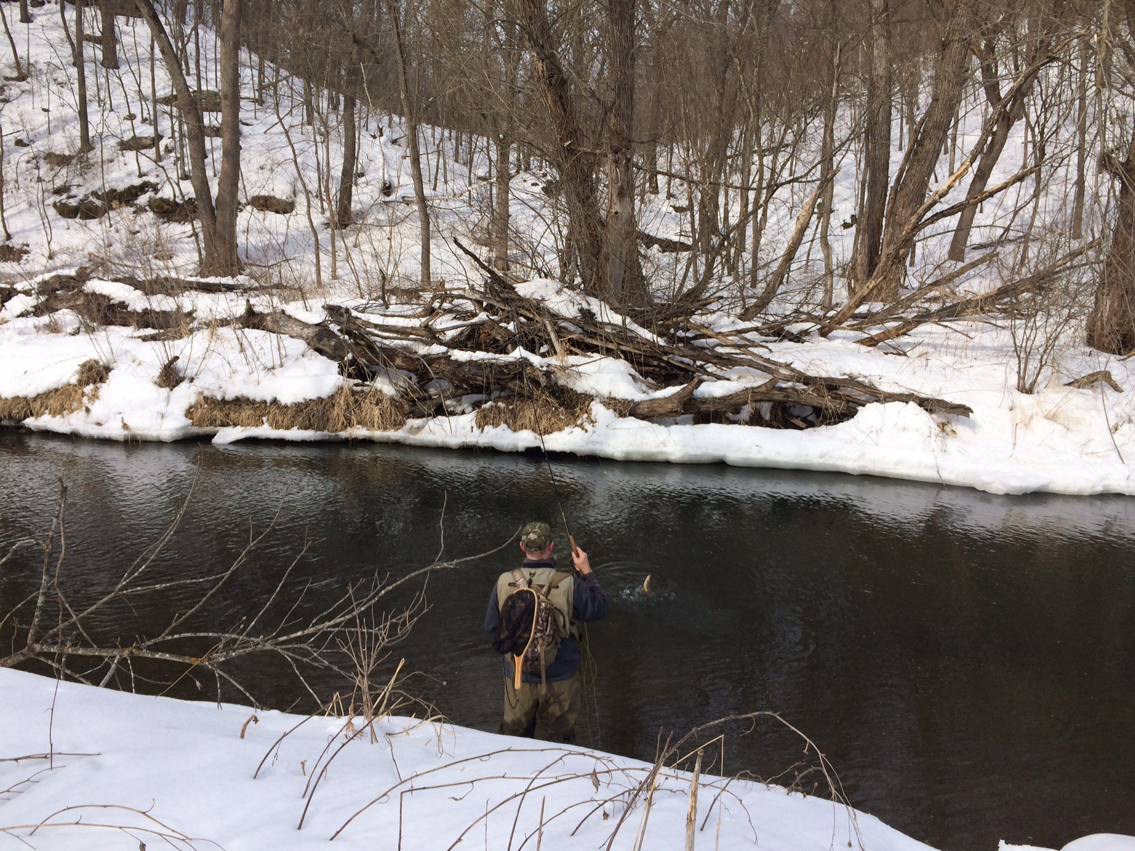 Minnesota trout forums for Trout fishing mn season